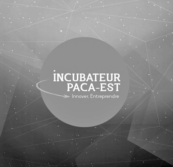 Looking back on 18 months of business Incubation